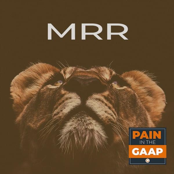 MRR-lion-of-saas-metrics